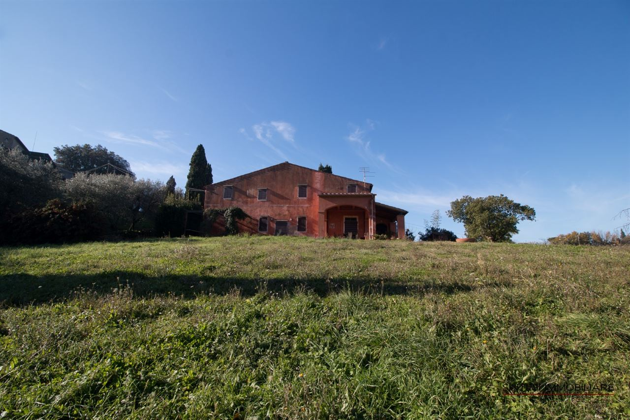 Sale Real Estate Wineries , 19th Farms and Wine-producing