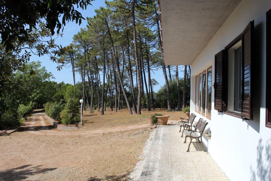 Vendita immobili case al mare villa di prestigio in vendita vicino al mare quercianella - Case vendita livorno con giardino ...