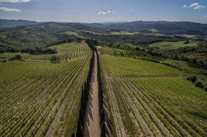prestigiosa-tenuta-vinicola-vendita-toscana-siena