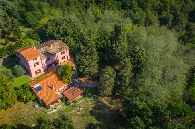 autentica-villa-settecentesca-con-piscina-guesthouse-in-vendita-toscana-pisa-fauglia