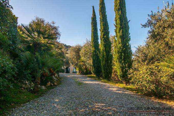 viale-ingresso-villa-di-charme-con-parco-in-vendita-toscana-lucca