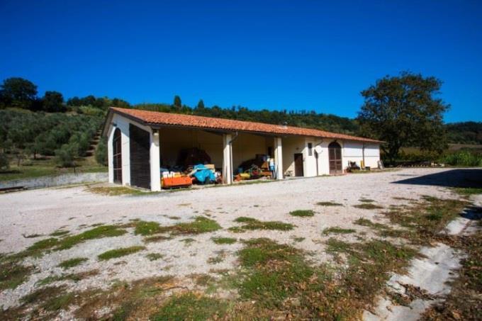 cantina-produzione-vino-fattoria-in-vendita-toscana-pisa-countryside