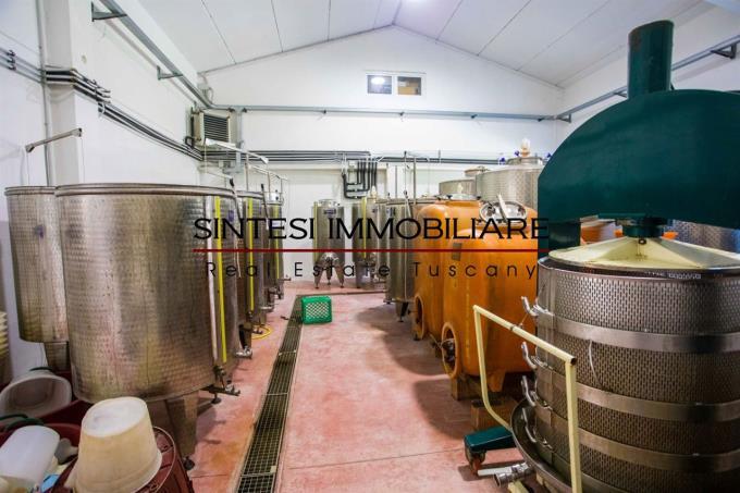 cantine-esclusiva-fattoria-in-vendita-toscana-maremma-pisa