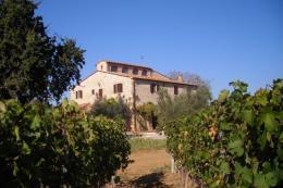 Casale storico ristrutturato con piscina in vendita Toscana | Bolgheri | Castagneto Carducci