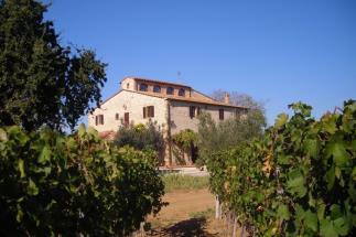 Casale storico ristrutturato con piscina in vendita Toscana   Bolgheri   Castagneto Carducci