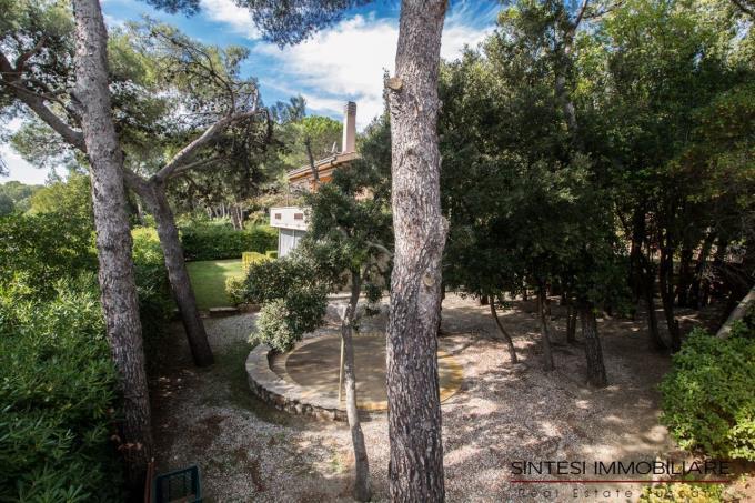 giardino-con-pini-marittimi-esclusiva-mare-villa-in-vendita-toscana-quercianella
