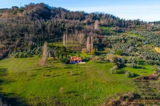 casale ristrutturato con vista mozzafiato 2 camere   guesthouse   oliveta Bio   poggio paradiso