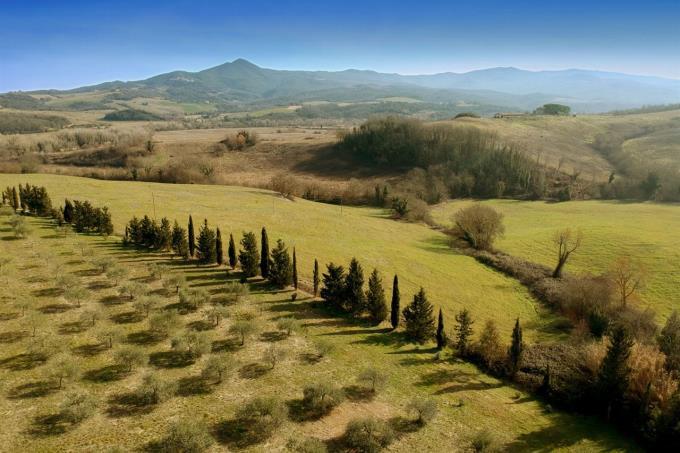 autentico-casale-con-parco-vicino-mare-in-vendita-toscana-Livorno-Bibbona