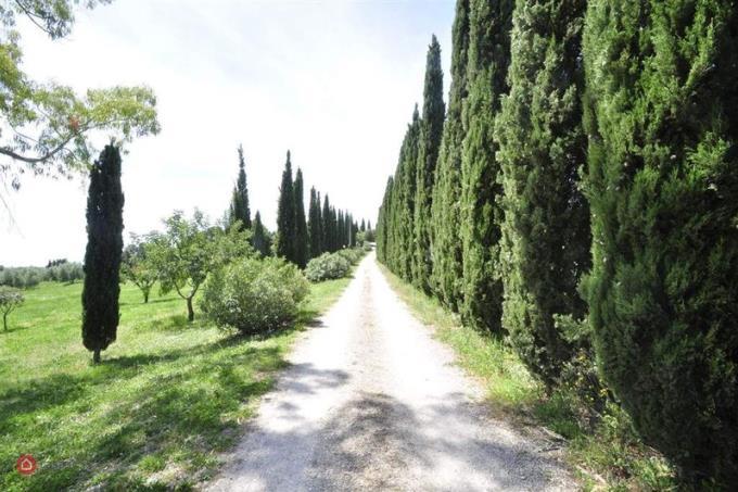 viale-ingresso-con-cipressi-magnificata-tenuta-6-camere-5-bagni-vista-mare-in-vendita-toscana-suvere