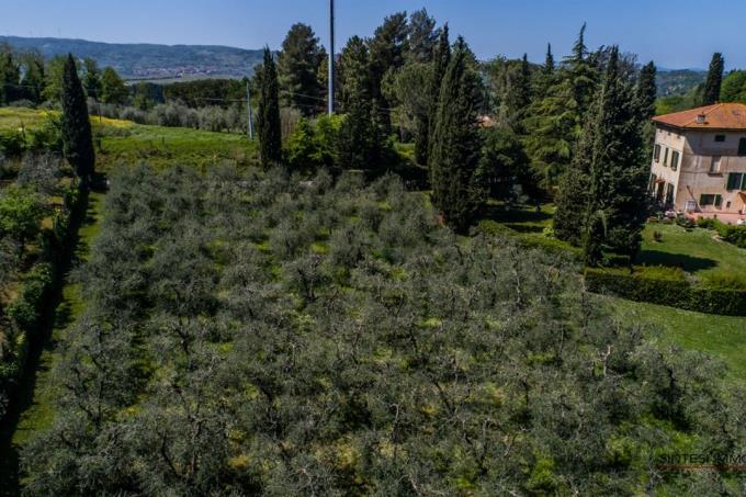 villa-d'epoca-di-prestigio-con-parco-in-vendita-toscana-colline-pisane