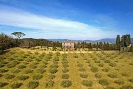 Exclusive stone farmhouse for sale Tuscany | Livorno coast | Bibbona