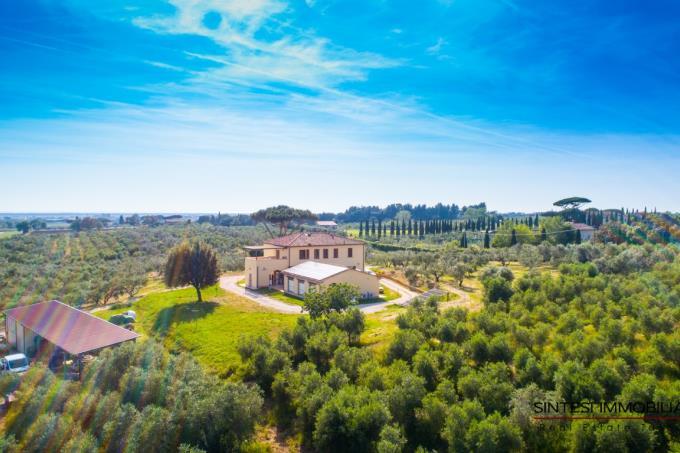 bellissima-fattoria-con-vigneti-olivi-in-vendita-toscana-livorno-bibbona