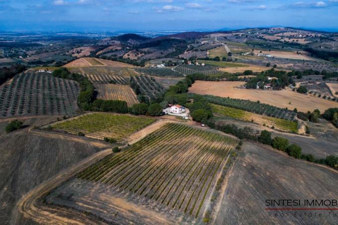 esclusiva-fattoria-con-vigneti-toscana-grosseto-scansano-morellino