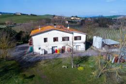 azienda vinicola| casale 400 mq | vigneto 23000 mq |cantine|  in vendita Toscana | Terricciola