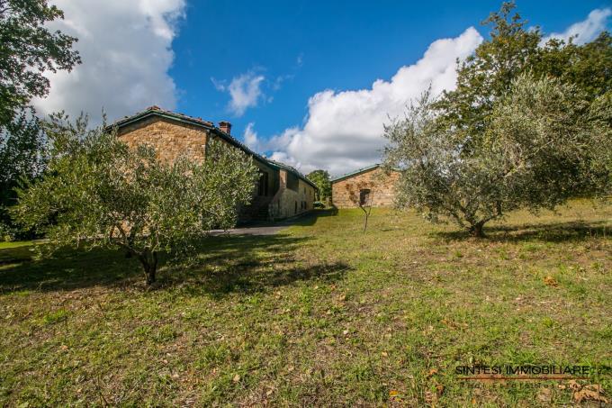 giardino-incantevole-tenuta-con-olivi-due-casali-in-vendita-toscana-pisa-castelnuovo-val-di-cecina