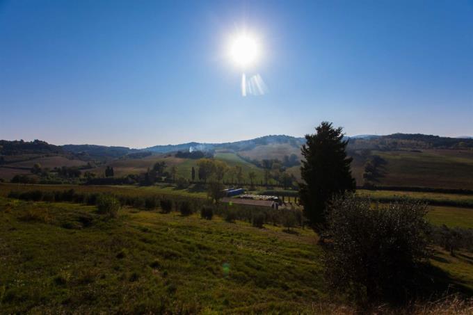 incantevole-fattoria-tenuta-con-vigneti-in-vendita-toscana-colline-pisane