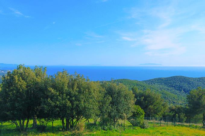 antico-casale-con-splendida-vista-mare-in-vendita-toscana-costa-livorno
