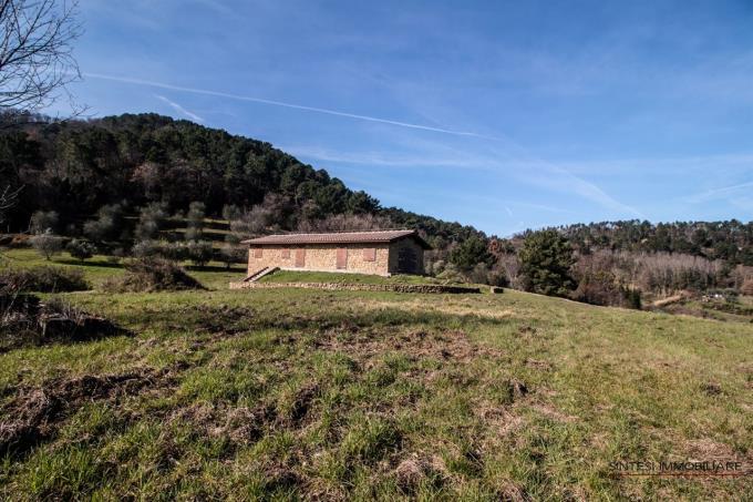 esclusiva-fattoria-con-villa-d'epoca-e-casale-in-vendita-toscana-volterra