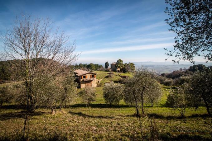guesthouse-fattoria-di-prestigio-in-vendita-toscana-campagna-di-volterra