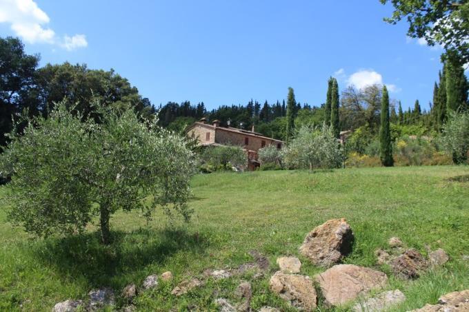 il-parco-del-rustico-di-prestigio-in-vendita-toscana-pisa-montecatini-val-di-cecina