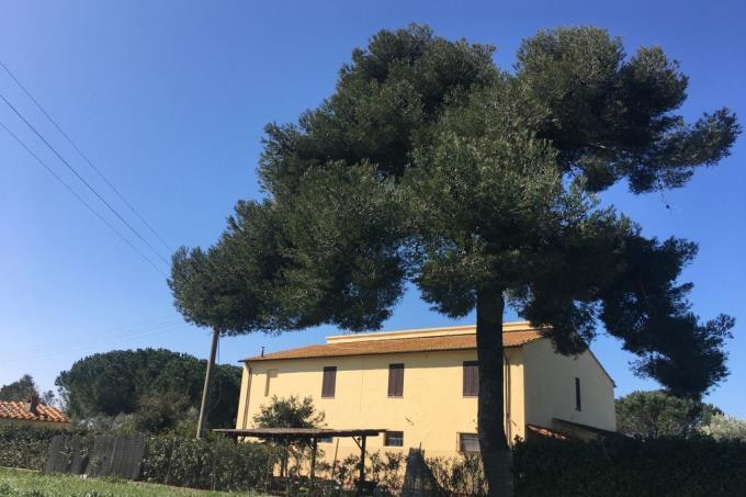 esclusiva-casa-di-campagna-con-piscina-in-vendita-toscana-costa-etrusca-bolgheri