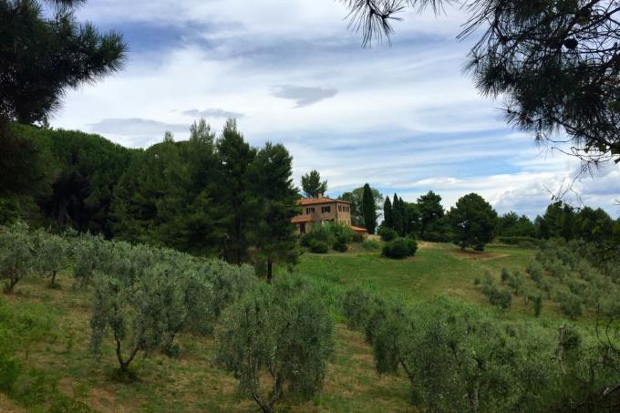 prestigiosa-residenza-di-campagna-ottocentesca-in-vendita-toscana-pisa-chianni
