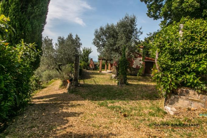 giardino-con-olivi-rustico-da-ristrutturare-vista-mare-in-vendita-toscana-pisa-riparbella