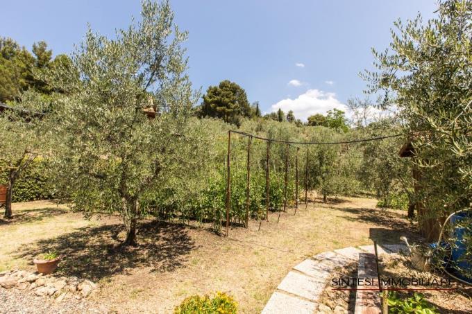 oliveta-lussuosa-villa-vendita-toscana-riparbella