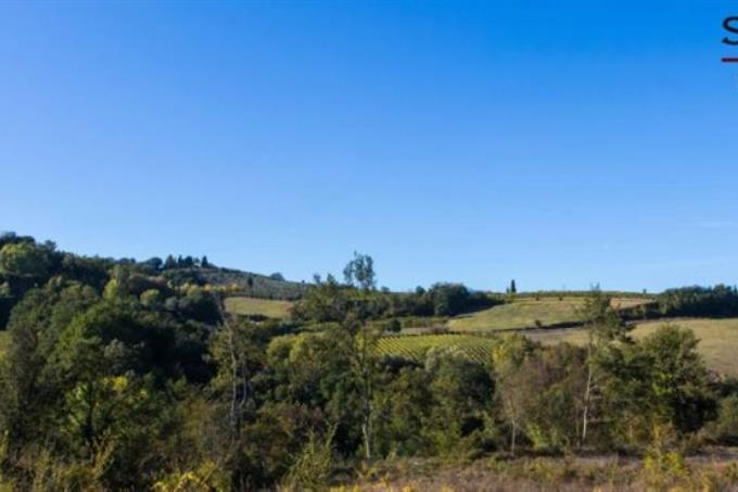 panorama-tenuta-vitivinicola-vernaccia-in-vendita-toscana-siena-san-gimignano