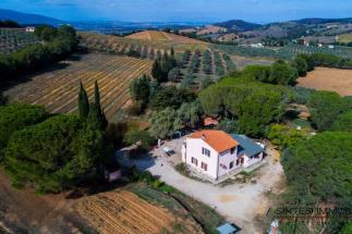 Fattoria con vigneti Morellino DOC in vendita | Toscana, Grosseto, Scansano