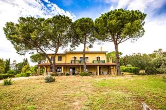 Luxury estate with vineyard for Sale in Tuscany near Bolgheri  | Livorno