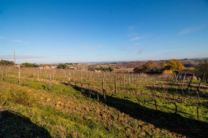 prestigiosa-tenuta-vitivinicola-in-vendita-toscana-pisa