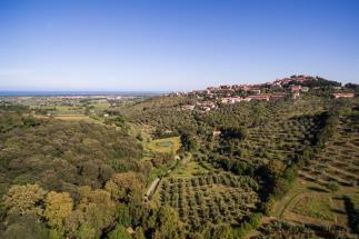 Prestigioso ex-mulino settecentesco in vendita sul mare Toscana| Livorno| Castagneto Carducci