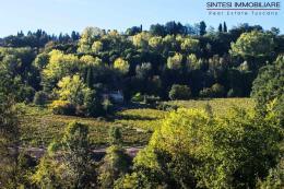 tenuta| fattoria |vitivinicola villa d'epoca | cantina in vendita in Toscana | Siena | San Gimignano