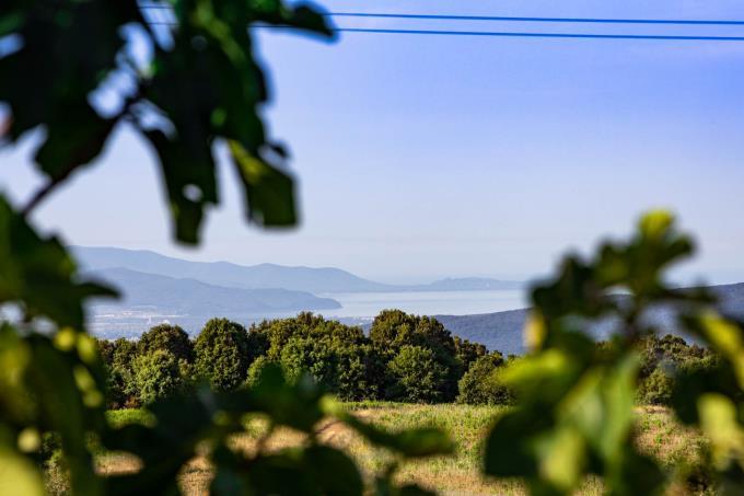 magnifica-vista-mare-villa-d'epoca-con-piscina-in-vendita-toscana-grosseto-massa-marittima