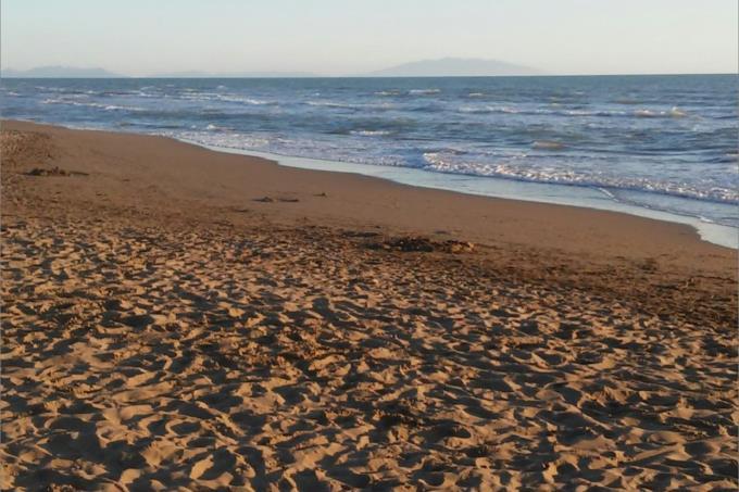 spiaggia-villa-vendita-toscana-cecina-marina