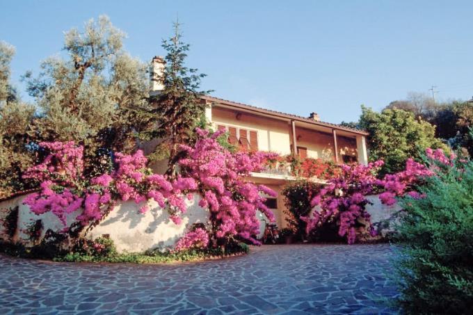 tenuta-4-casali-villa-padronale-in-vendita-toscana-livorno-castagneto-carducci