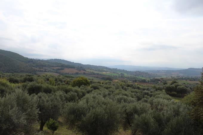 vista-aperta-autentico-casale-ristrutturato-in-vendita-toscana-maremma-saturnia