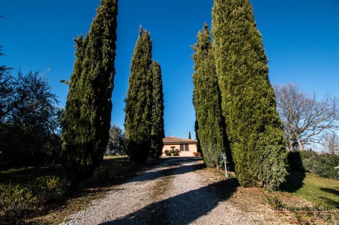 villa-di-prestigio-in-vendita-tra-i-vigneti-del-morellino-e-l'argentario