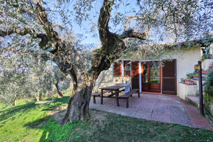 villa-tenuta-vicino-mare-oliveta-in-vendita-toscana-maremma-castagneto-carducci