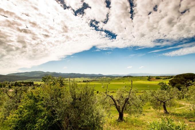 vista-straordinaria-tenuta-vendita-toscana-maremma-bibbona